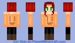 aremira's Contest; Round 1. Minecraft Skin