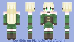 𝔼𝕝𝕧𝕖𝕟 𝕎𝕒𝕣𝕣𝕚𝕠𝕣 Minecraft Skin