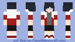 I can't make male hairstyles yet so have a Female Version of my Favorite *yes i have decided who's my favorite SHOCKING I KNOW* Paladin Minecraft Skin