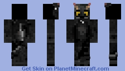 my cat (in progress skin) Minecraft Skin