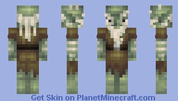 Bin-skin: Gnarly Old Goblin (smelly!) Minecraft Skin