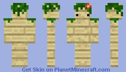 SemiCamouflage Birch Planks with a face! Minecraft Skin