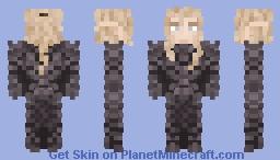 Paladin Elf Minecraft Skin