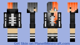 First Skin of Theme 1 Minecraft Skin