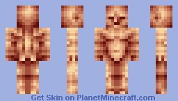 Male Anatomy Minecraft Skin