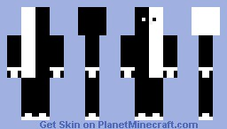 Black and White Minecraft Skin
