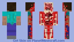Half cut Steve Minecraft Skin