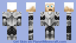 Paladin Minecraft Skin