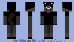 PersonWhoPlaysMinecraft request 2/3 - Cat Minecraft Skin