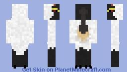 Royal Spoonbill Minecraft Skin