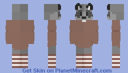 Raccoon without a job Minecraft Skin