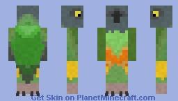 Senegal Parrot Minecraft Skin