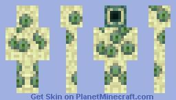Basem Minecraft Skin