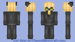 Chat Noir ~ Miraculous Ladybug Minecraft Skin