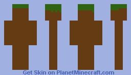 Normal Grass Block Minecraft Skin