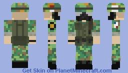 Erdl pattern 1968 Minecraft Skin