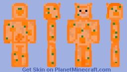 Pumpkin Bear Minecraft Skin