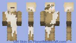 A Wandering Paladin Minecraft Skin
