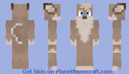 Shawn - Redesign with detail Minecraft Skin