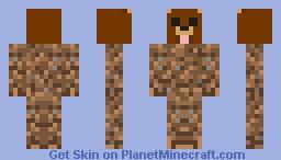 got a swag Minecraft Skin