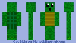 Suprised Turtle Minecraft Skin