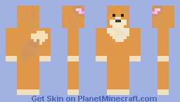 My First Skin - Baby Fox Minecraft Skin