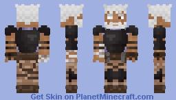 Alaia | Old Mercenary Minecraft Skin