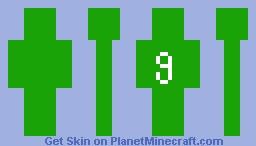 g Minecraft Skin