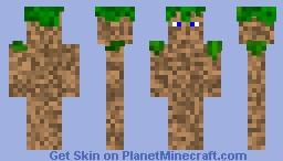 Dirt person idk what it is Minecraft Skin