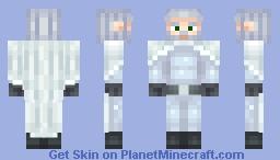 Winter Wizard Minecraft Skin