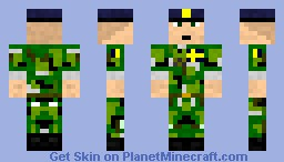 Swedish Soldier Minecraft Skin