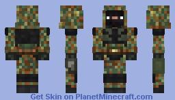 Freedom Minecraft Skin