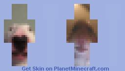 Video Call 😏👌 Minecraft Skin