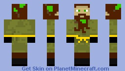 Druid Minecraft Skin