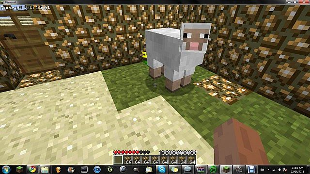 My first visitor Mr.Sheep lol