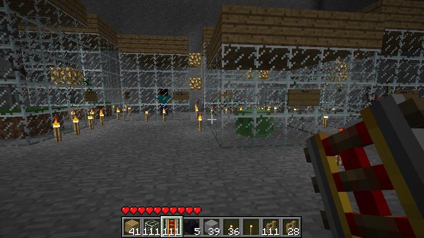 Minecraft Zoo Minecraft Project