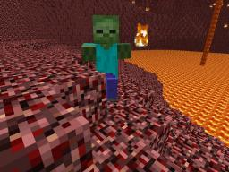 All NPC's in Nether and Normal World Minecraft