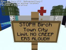 Birch Town Minecraft Map & Project