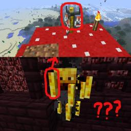 Did Anybody else notice this? Minecraft Blog