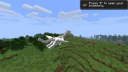 What to expect of Ender-Dragons Minecraft Blog