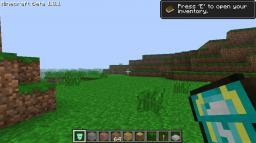 Shields! v1 [NEEDS MODLOADER] Minecraft Mod