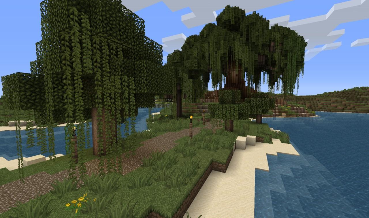Big ol' tree!