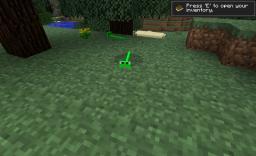 Animal mod 1.0.0 V2.0! Minecraft Mod