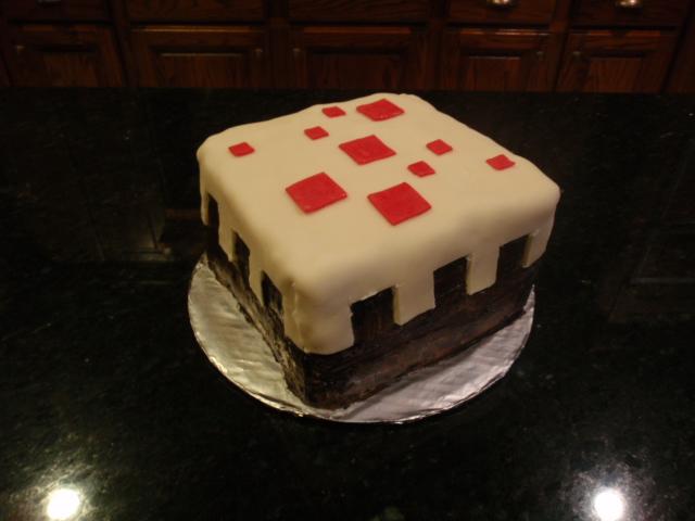Minecraft Cake Minecraft Project