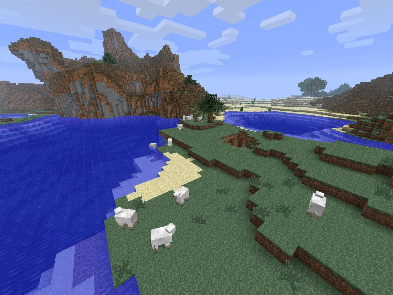 SHEEPS EVERYWHERE!