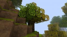 What about you?? Minecraft Blog Post