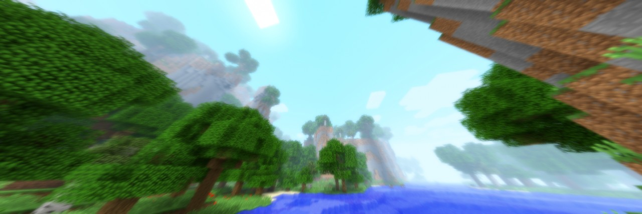 Another forest biome, though in a slightly different appearance.