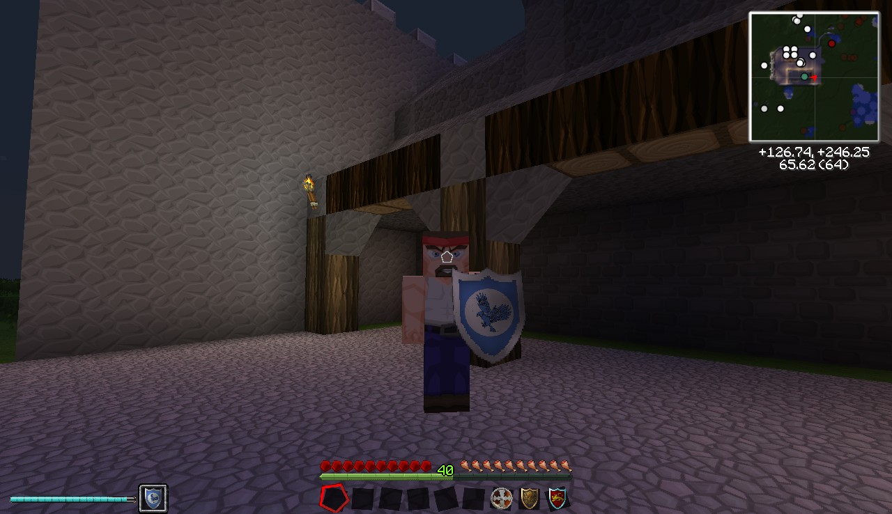 Example of iron shield from the 256x textures