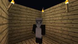 Quest For a Cat! Minecraft Blog