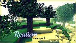 16x16 realism (16x16) [1.1] DOWNLOAD! Minecraft